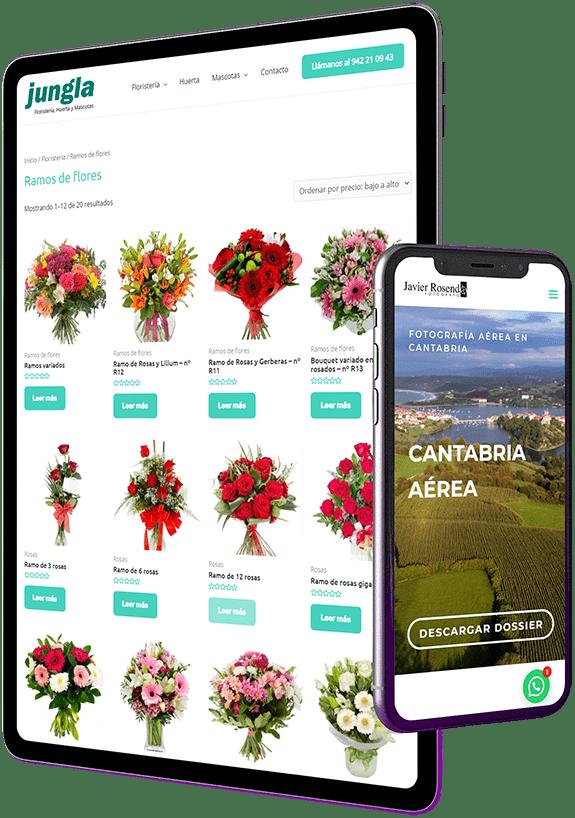 Agencia de diseño web Cantabria Santander