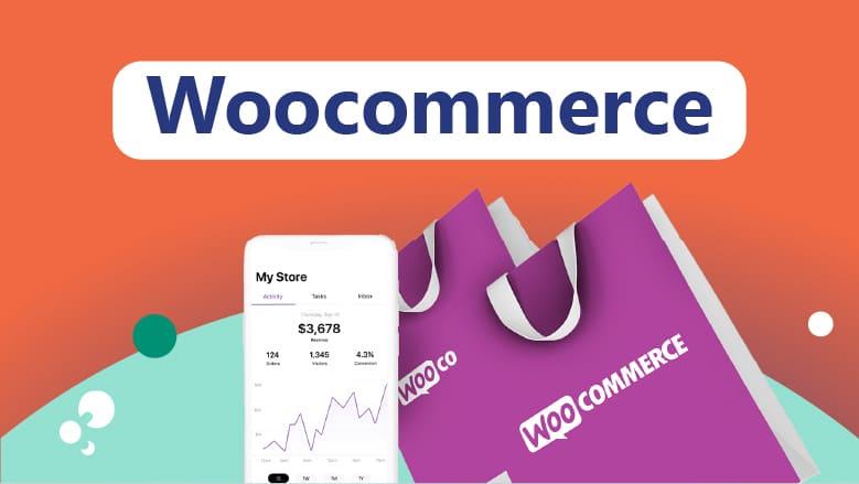 Diseño de tienda online con Woocommerce en Santander y Cantabria